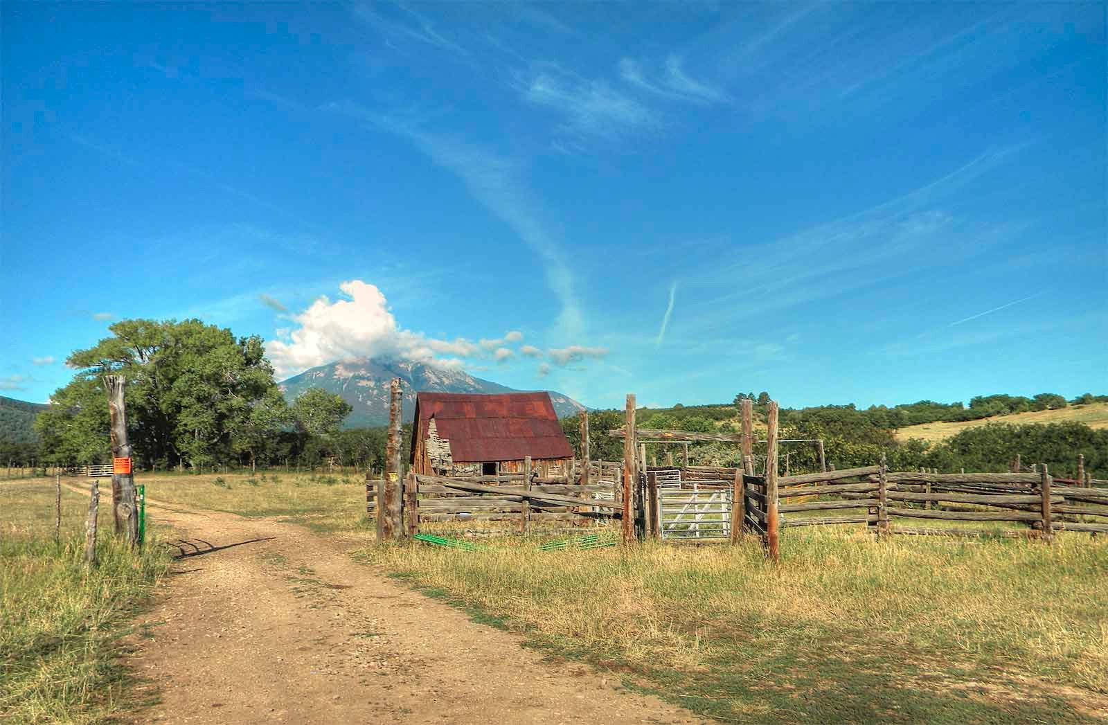 Cattle-&-wildlife,-2012-072_tonemapped