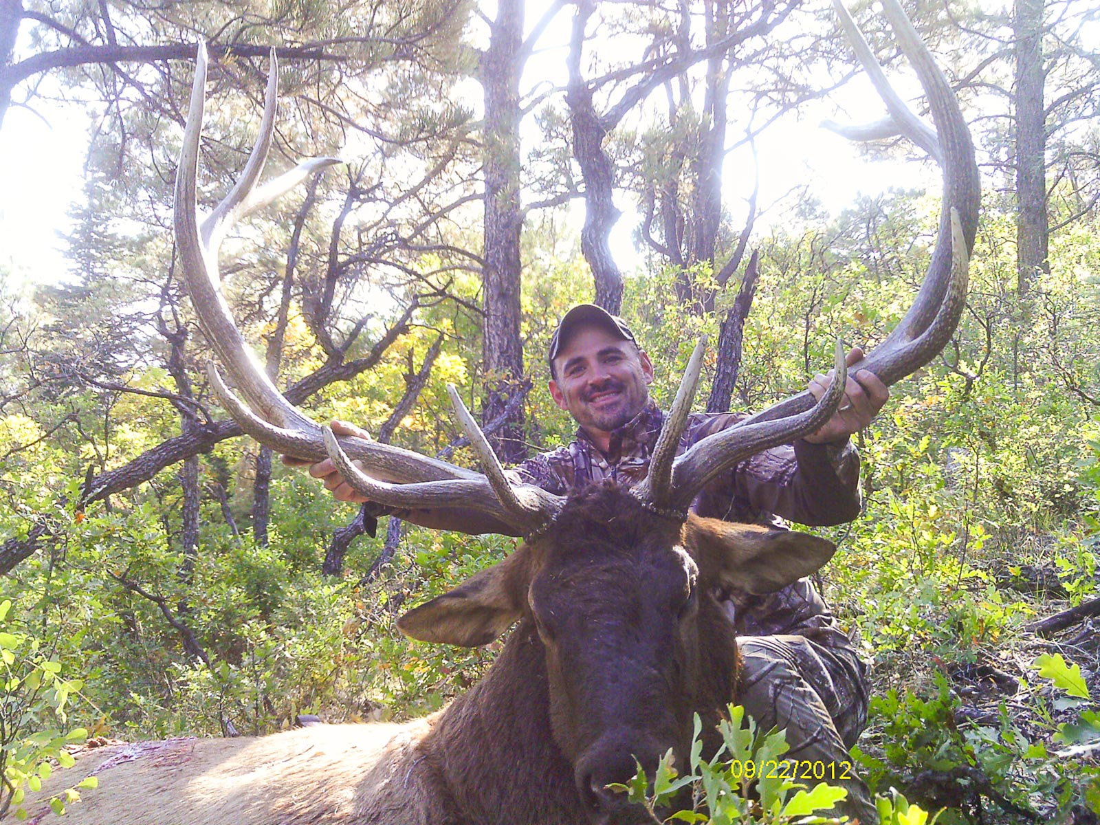 Hunter with a harvested bull elk.