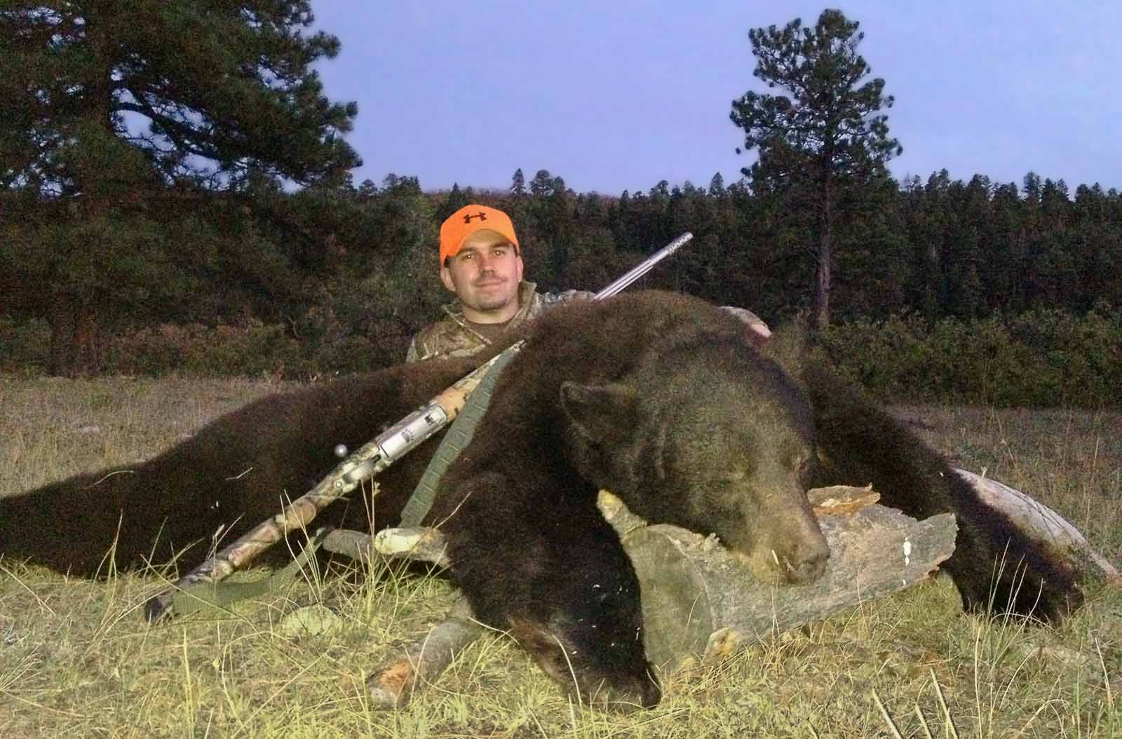 Harvested bear